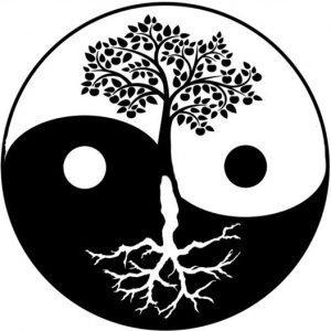 Yin Yang Boom