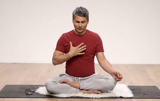 Meditate George Langenberg